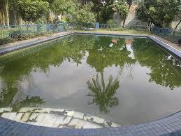Bể bơi bị đục: nguyên nhân và cách xử lý