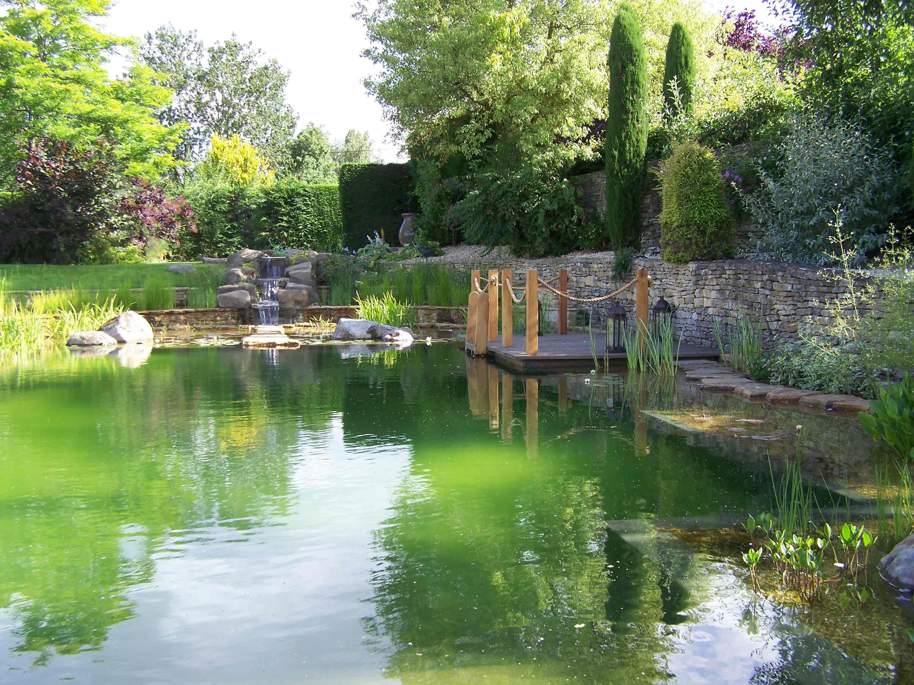 Xây dựng bể bơi tự nhiên thân thiện với môi trường